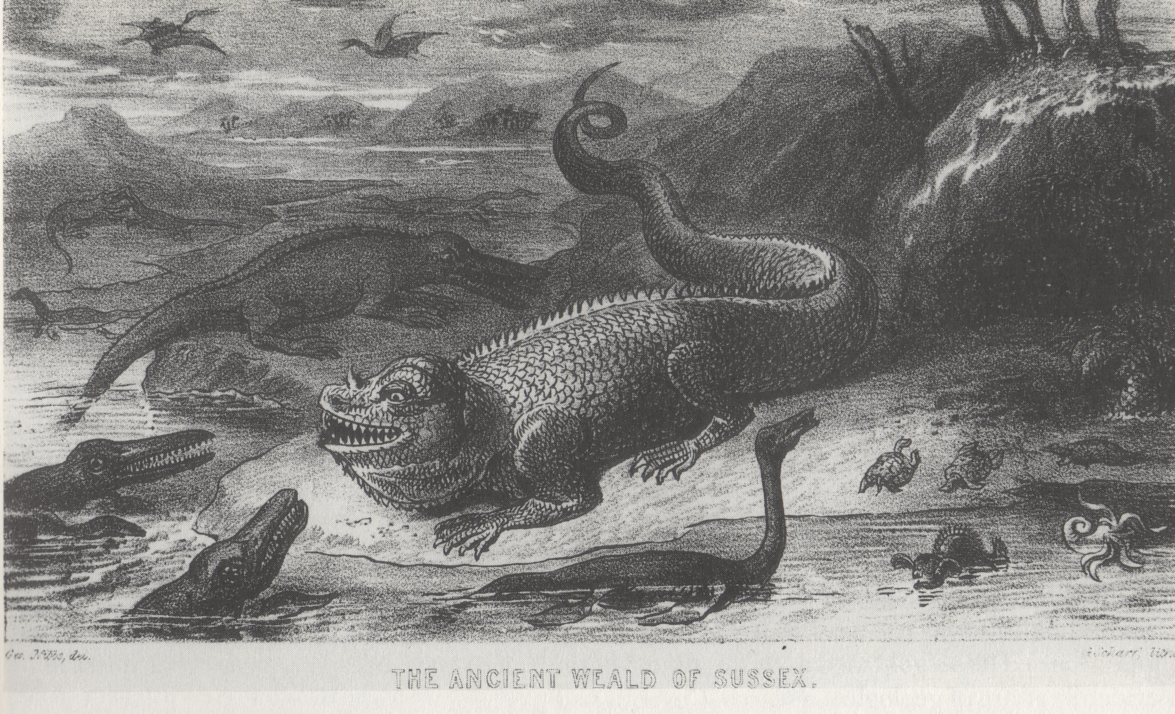 Figure 1 : Iguanodon par Nibbs (in Richardson, 1838, Sketches in Prose and Verse)